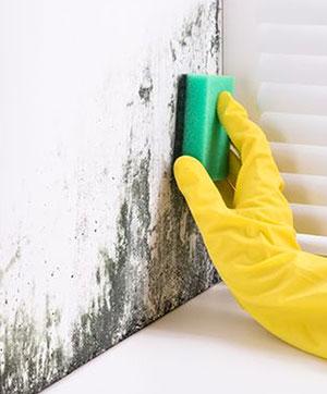 Odstranění plísní ze zdiva
